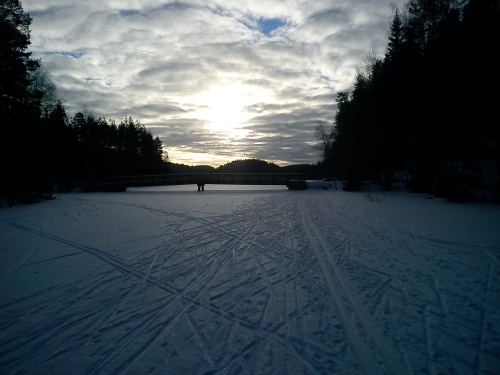 23 februar 2013 Østmarka