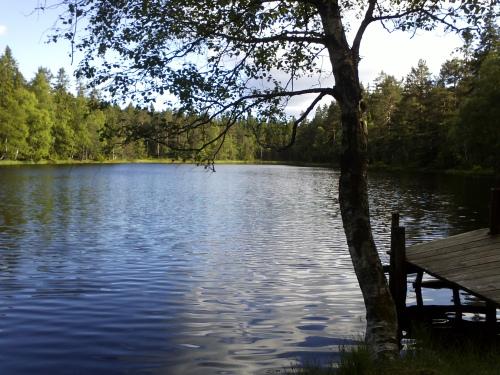 1 juli 2013 Østmarka – Lauvtjern