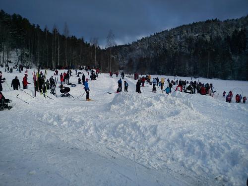 18 januar 2013 Østmarka