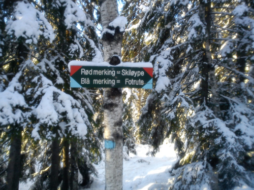 27 januar 2012 Østmarka – Skjeldbreia
