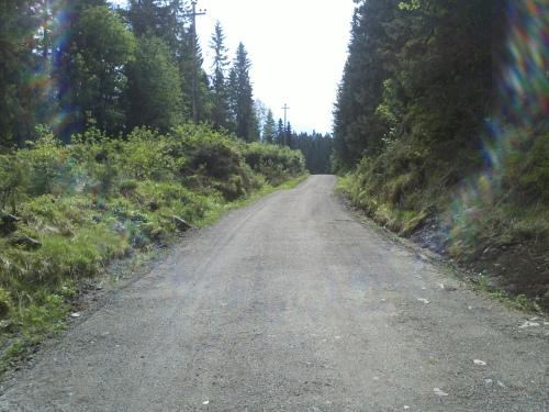 mai 2013 Nordmarka