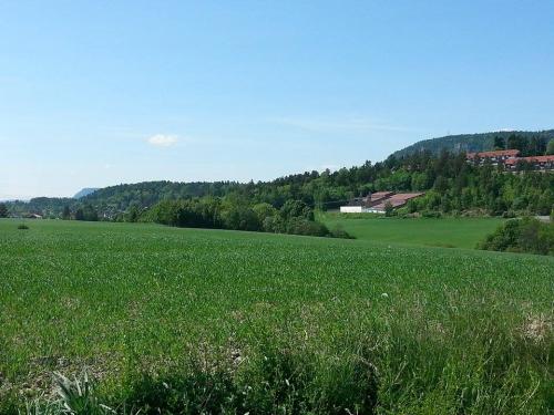 Landevei; Dælivann og Kolsås