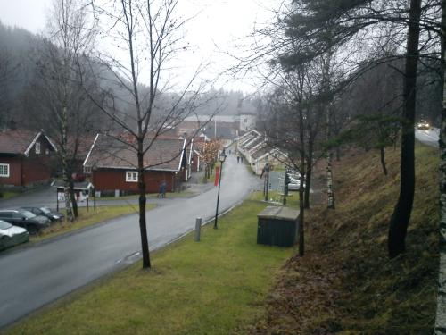 5 mars 2014, Kolsås rundt