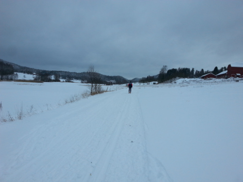 17 januar 2014 Sørlihavna – Badstudalen – Morterudvann