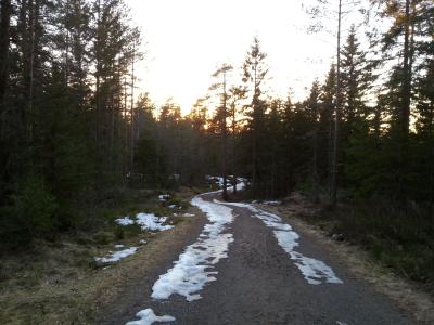 10 mars 2014 Østmarka; Bestemoråsen – Nord-Elvåga