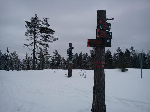 13 januar 2014 Østmarka – Haukåsen