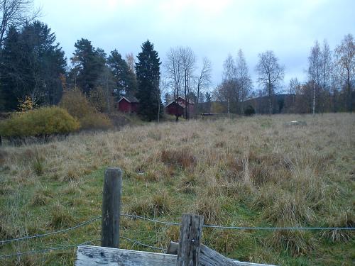 18 oktober 2013 Landevei/Østmarka