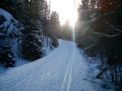 20 januar 2014 Østmarka – Deledalen