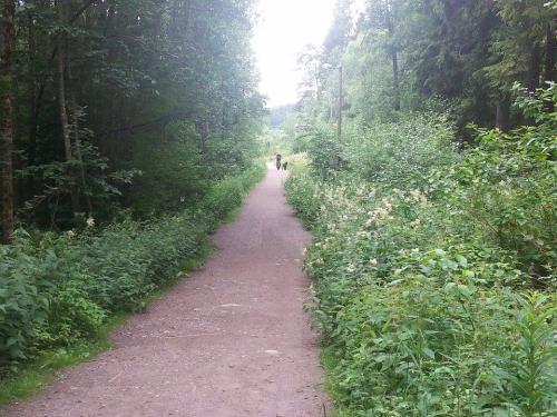 Landevei; Enebakkveien til Maurtuveien via Stensrudtjern