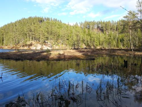 Østmarka; Langvann – Spinneren