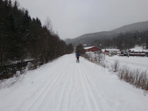 24 januar 2014 Skitur i Nordmarka, Elveli-Hansemyr-Kikut