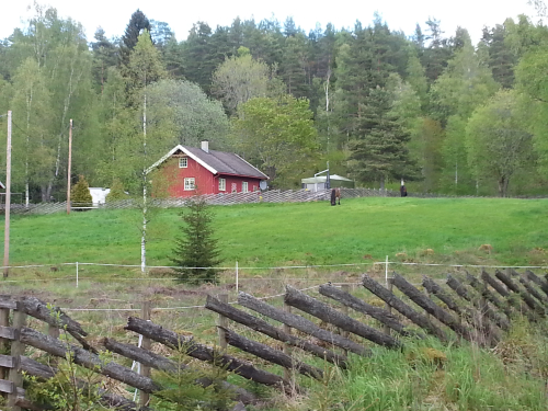 Østmarka; Ødegården – Bestemoråsen – Slettfjell….