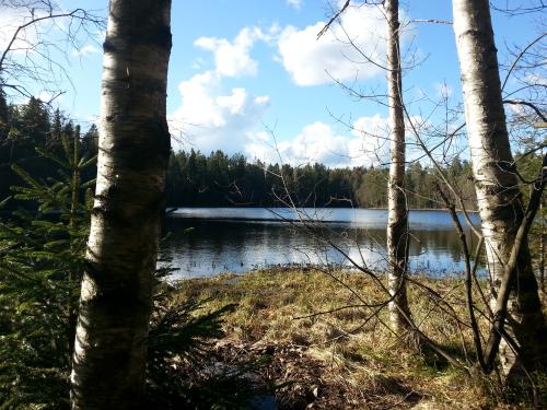 Østmarka; Kroktjern – Lauvtjern – Hauktjern…