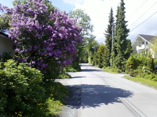 Landevei; Sandvika og omegn….