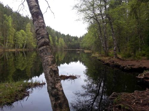 Østmarka; Lutvann rundt og litt til…