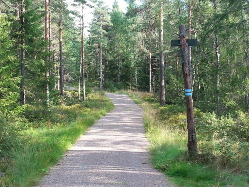 Østmarka; Haraløkka – Dølerud