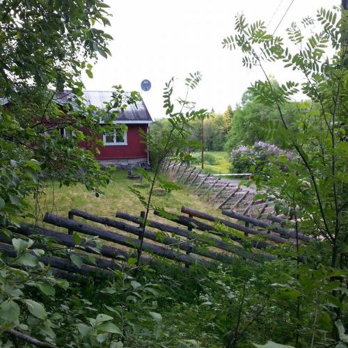 Østmarka; Haraløkka – Mariholtet – Rådyrkleiva….