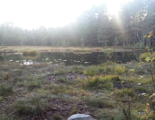 Østmarka; 10 vann i nærområdet….