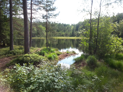 Østmarka; Nøklevann rundt og litt til…