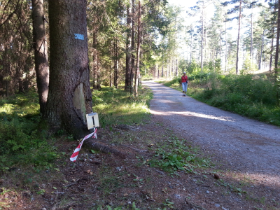 Follotrimmen 6.løp – Langhus skole