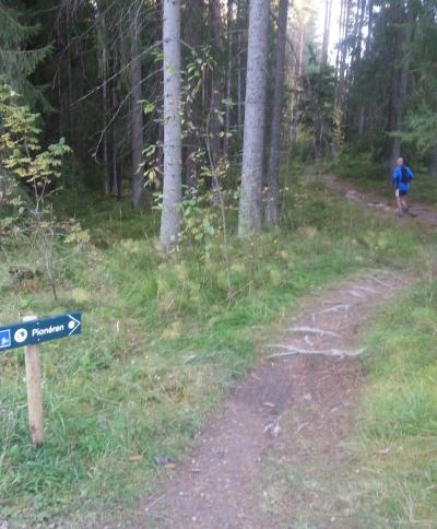 Østmarka;  – sykkelsti i Østmarka..