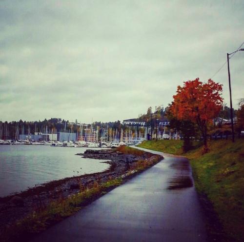 Sandvika – Løkeneshalvøya tur retur…