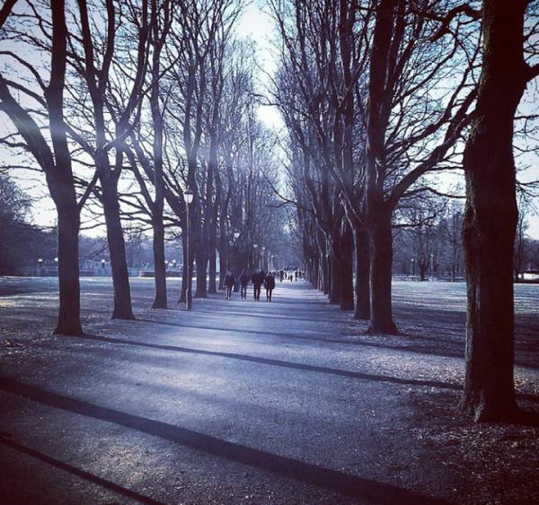 En solskinnsdag i Frognerparken – Vigelandsparken….