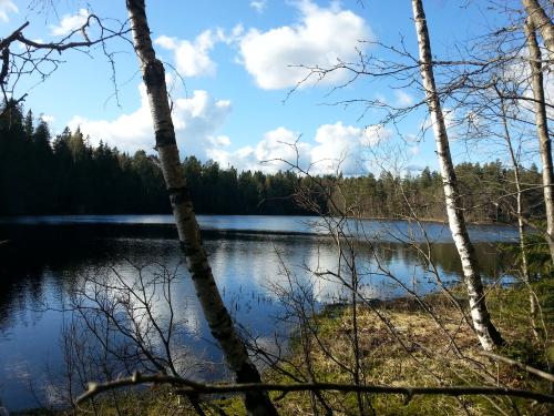 Østmarka; Kroktjern – Lauvtjern – Mariholtputten…