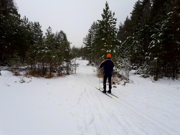 Østmarka; skitur i Losbyvassdraget….