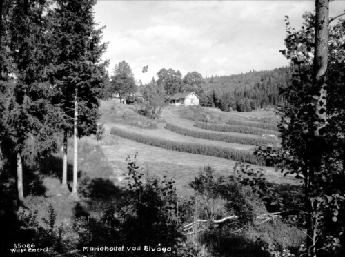 Østmarka; Knuttjern – Igletjernbekken – Ellingsrudelva…