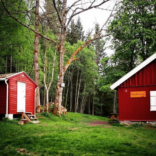 Østmarka; Rundvannsåsen – Dølerud – Steinkirken – Grønmo…