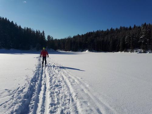 Østmarka; på ski fra Haraløkka til Deledalen – Påskeløypa – Bjørndalen…