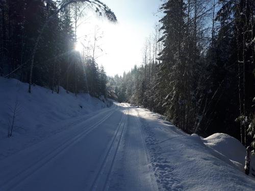 Østmarka; på ski fra Haraløkka til Geitsjøen – Biritjern – Børtervanna…