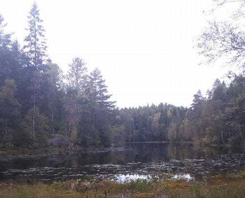 Østmarka; Skullerudåsen – Svartkulp – Trollvann…
