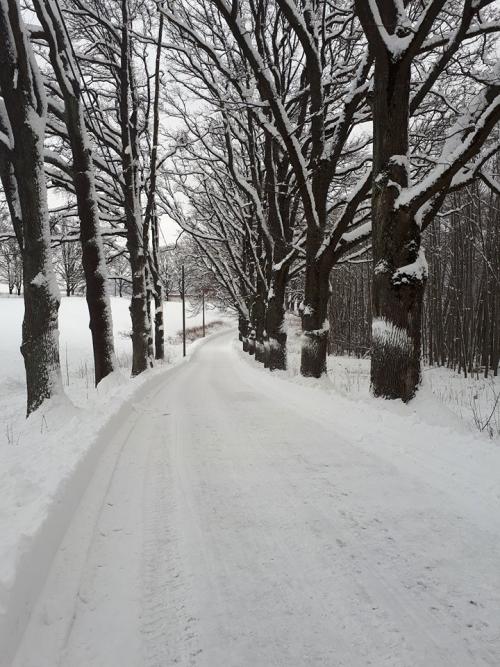 Kolsåsrunden – tur/retur Sandvika…