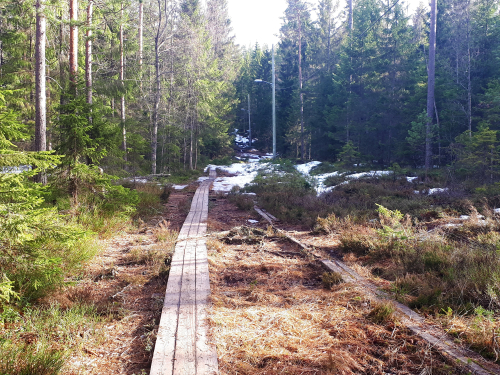 Østmarka; Haraløkka – Karismyra – Smalvann – Østmarkskpl…..