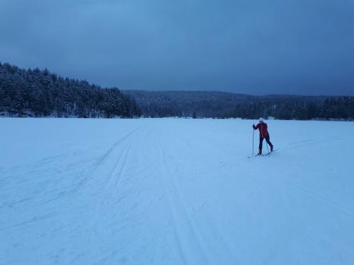Østmarka; på ski fra Haraløkka til Gudbrandsdalen – Fingerbølmyrene – Deledalen…