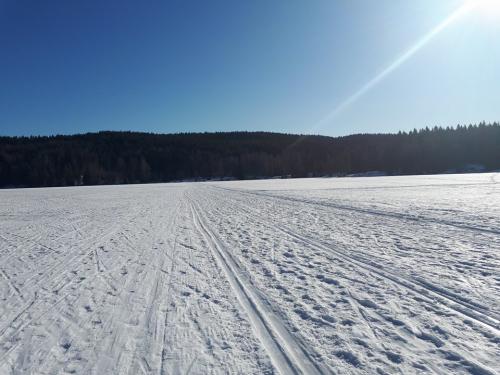 Østmarka; Hauken opp fra Haraløkka – tur/retur…
