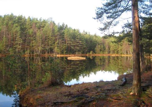 Østmarka; Rustadsaga – Sarabråten – Rundtjernbakken….