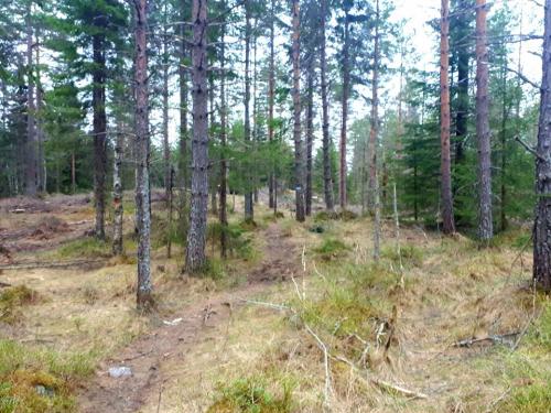 Østmarka; Haraløkka – Kroktjern – Branntårnet – Slettfjellet…