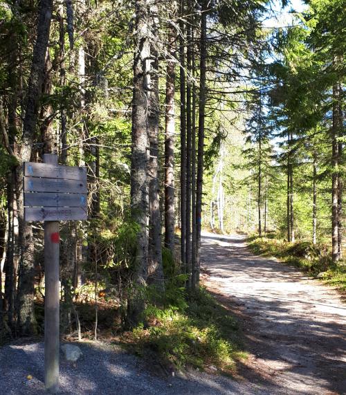Spydeberg; Gulltjernmosen naturreservat – Skimtefjellhytta…
