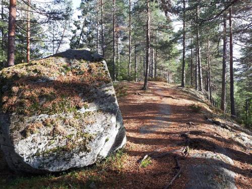 Østmarka; Cuidrobakken – Flyktningeruta – Trollvann…..