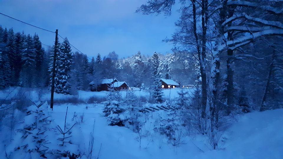 Østmarka; Med hodelykt, brådder og joggesko i marka…