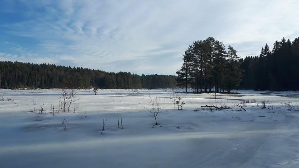 Østmarka; Foto tur til Nøklevann og Sørlimyra