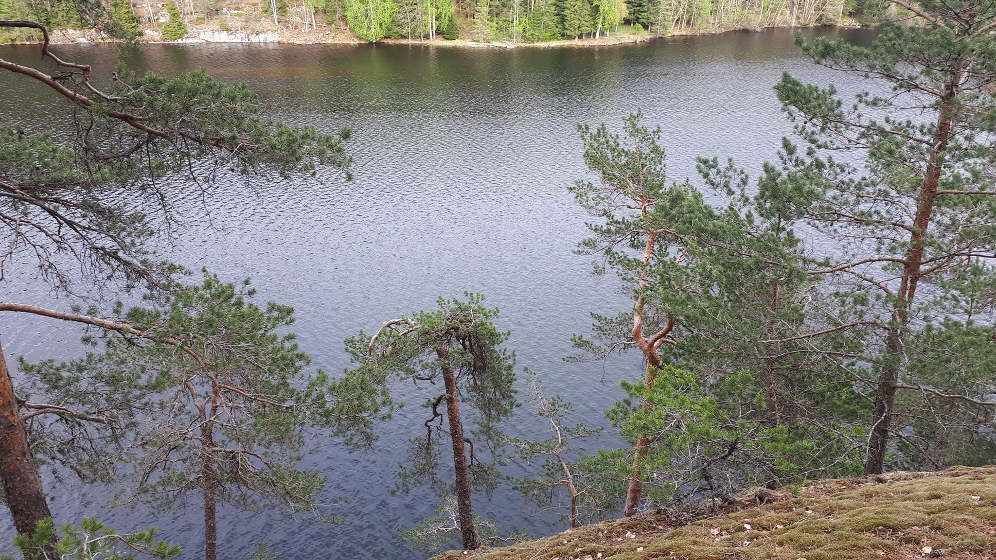 Stiløping i Nøklevannskogen og litt til….