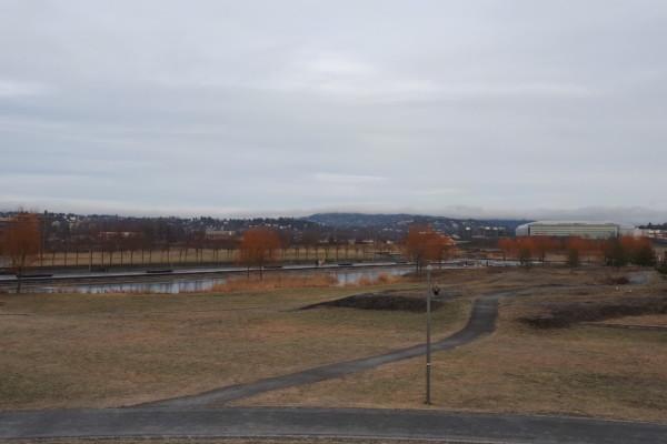 Rusletur på Fornebulandet og i Nansenparken…