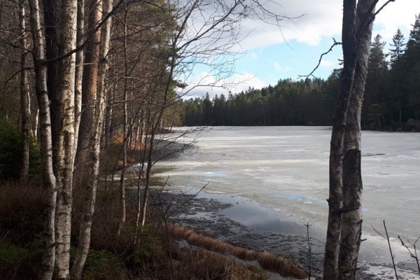 Ulsrudvann – Nøklevann – Rundtjern – Østensjøvannet…..