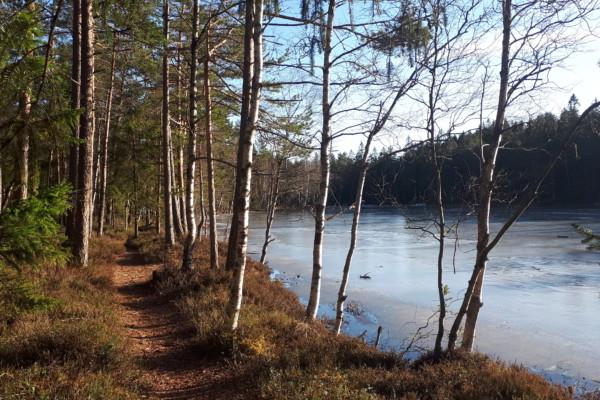 Østmarka; Smalvann rundt fra Haraløkka….