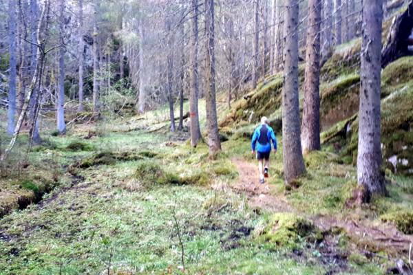 Østmarka; Stiløping over Skullerudåsen – Rundvannsåsen til Dølerud…