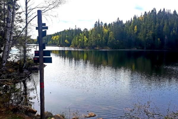 Østmarka; Haraløkka – Halssjøen – Skråbakkhullet (17.mai plassen)….